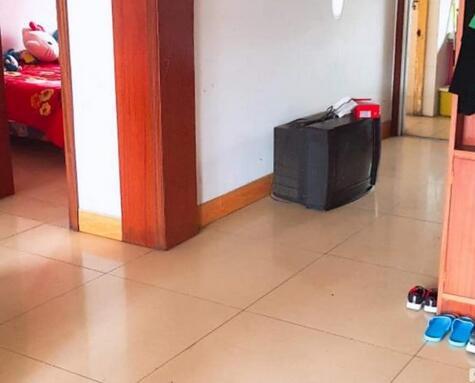 临淄 尚都林苑  一室一厅 六楼 高层